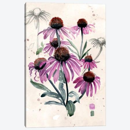 Purple Wildflowers I Canvas Print #JPP135} by Jennifer Paxton Parker Canvas Print
