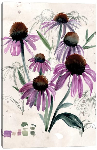 Purple Wildflowers II Canvas Art Print