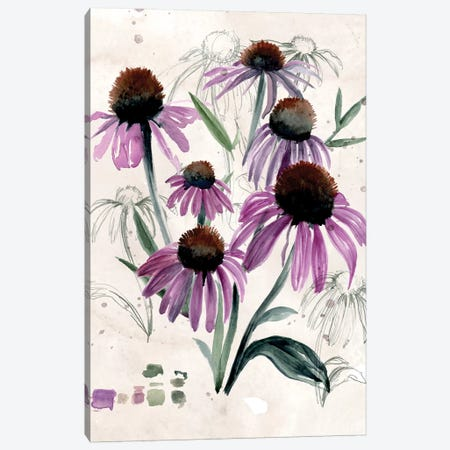 Purple Wildflowers II 3-Piece Canvas #JPP136} by Jennifer Paxton Parker Canvas Print