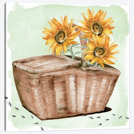 Summer Picnic II Canvas Print #JPP146} by Jennifer Paxton Parker Canvas Artwork