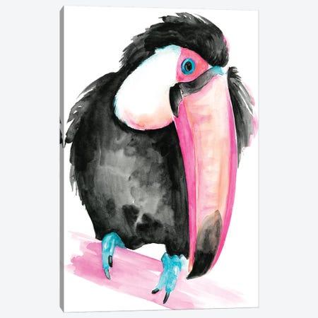 Technicolor Toucan I Canvas Print #JPP147} by Jennifer Paxton Parker Canvas Art