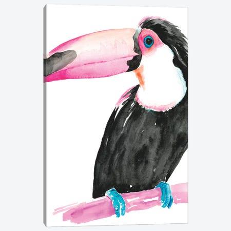 Technicolor Toucan II Canvas Print #JPP148} by Jennifer Paxton Parker Canvas Print