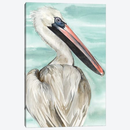 Turquoise Pelican I Canvas Print #JPP149} by Jennifer Paxton Parker Art Print