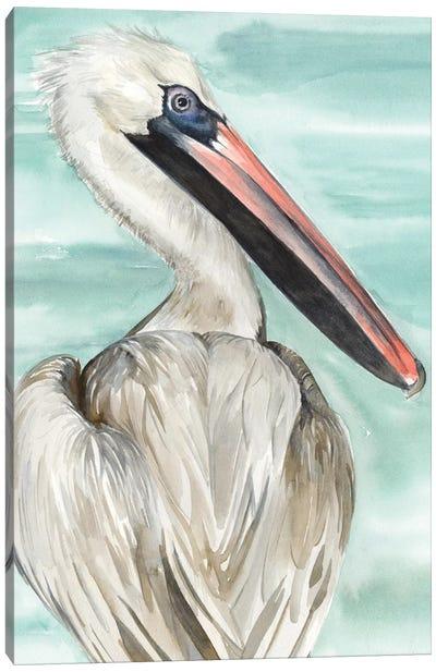 Turquoise Pelican I Canvas Art Print