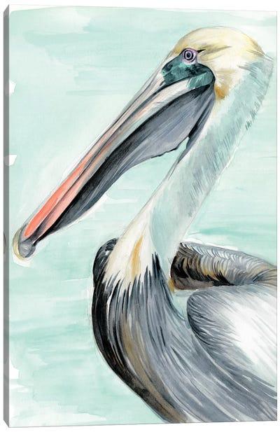 Turquoise Pelican II Canvas Art Print