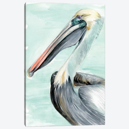Turquoise Pelican II Canvas Print #JPP150} by Jennifer Paxton Parker Canvas Artwork