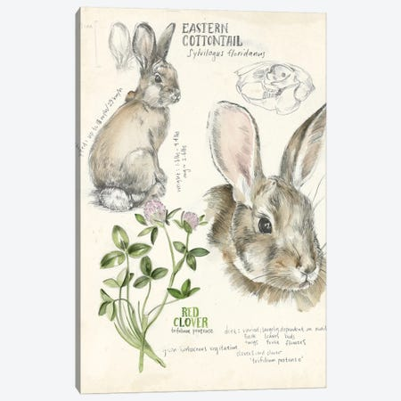 Wildlife Journals II Canvas Print #JPP154} by Jennifer Paxton Parker Art Print