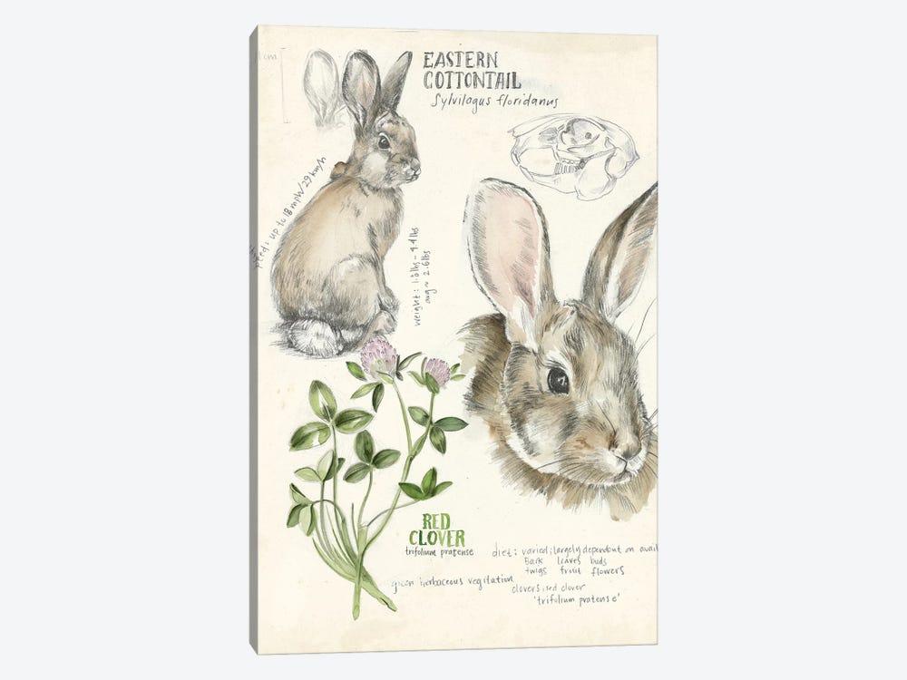 Wildlife Journals II by Jennifer Paxton Parker 1-piece Canvas Wall Art
