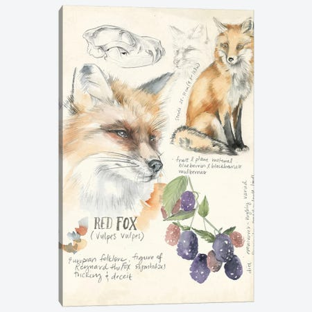 Wildlife Journals III Canvas Print #JPP155} by Jennifer Paxton Parker Canvas Art Print