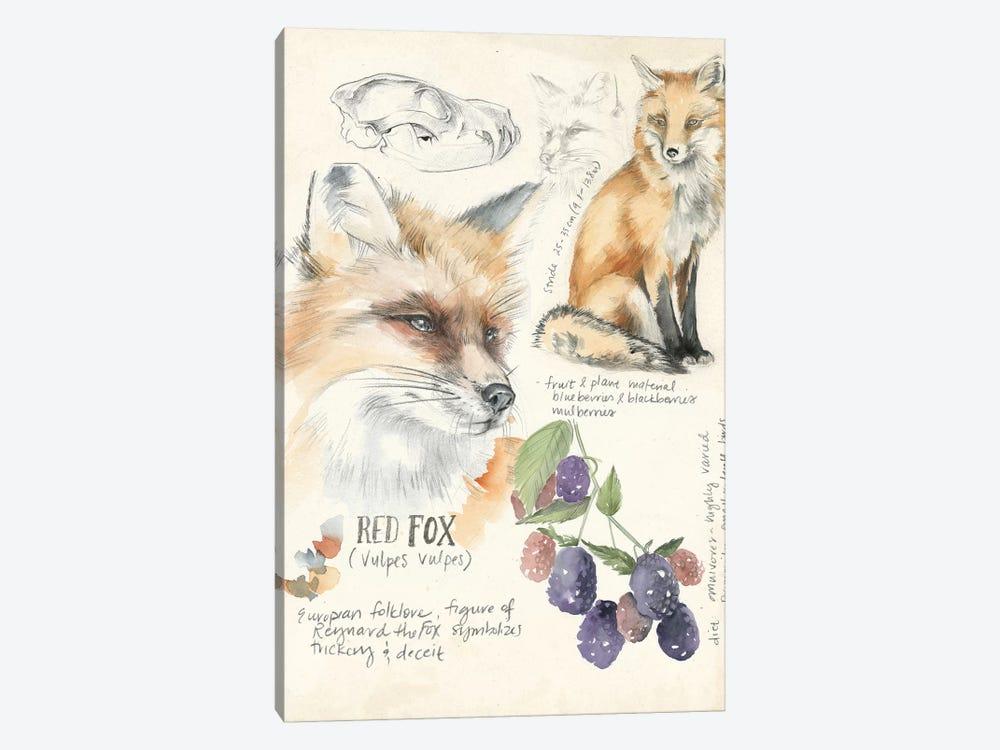 Wildlife Journals III by Jennifer Paxton Parker 1-piece Canvas Print
