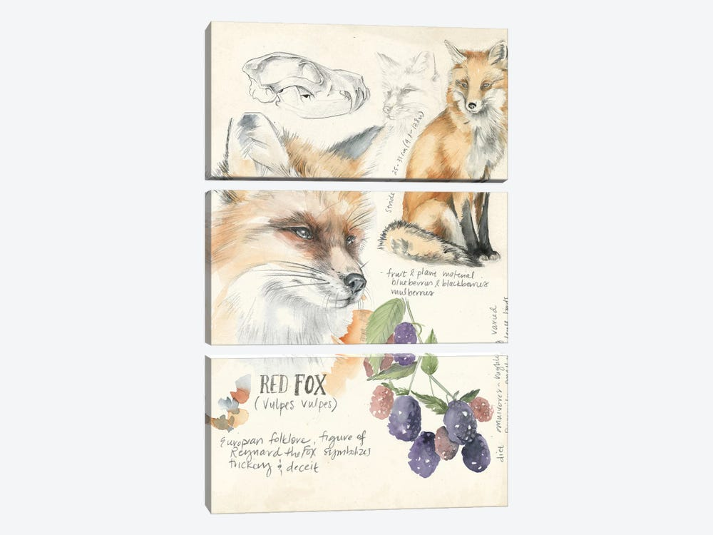 Wildlife Journals III by Jennifer Paxton Parker 3-piece Art Print