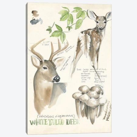 Wildlife Journals IV 3-Piece Canvas #JPP156} by Jennifer Paxton Parker Canvas Print