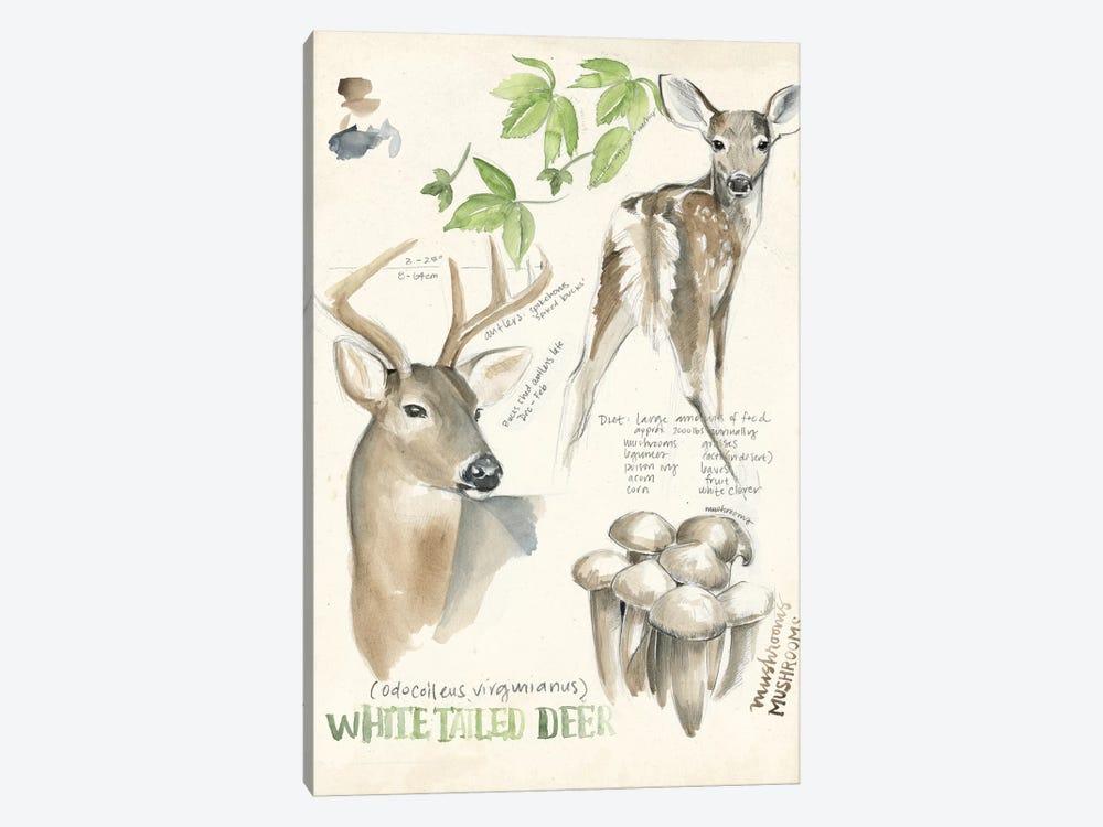 Wildlife Journals IV by Jennifer Paxton Parker 1-piece Canvas Artwork