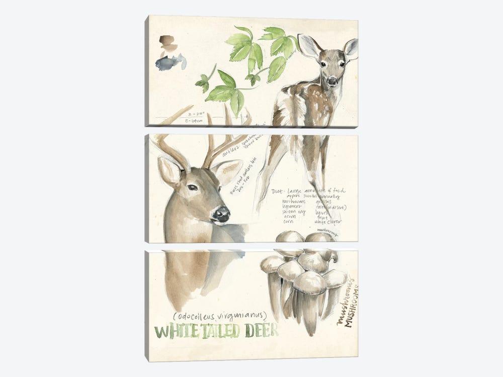 Wildlife Journals IV by Jennifer Paxton Parker 3-piece Canvas Art
