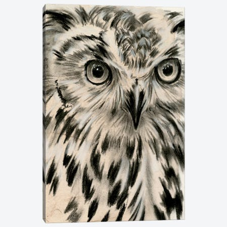 Charcoal Owl I Canvas Print #JPP159} by Jennifer Paxton Parker Canvas Wall Art
