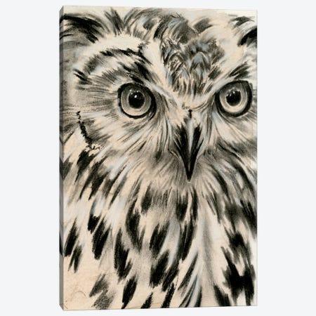 Charcoal Owl I Canvas Print #JPP159} by Jennifer Paxton Parker Canvas Wall Art