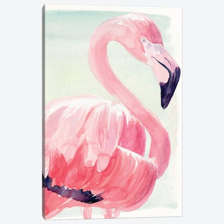 Pastel Flamingo II Canvas Print #JPP184} by Jennifer Paxton Parker Canvas Art