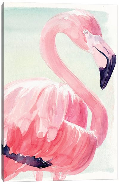 Pastel Flamingo II Canvas Art Print