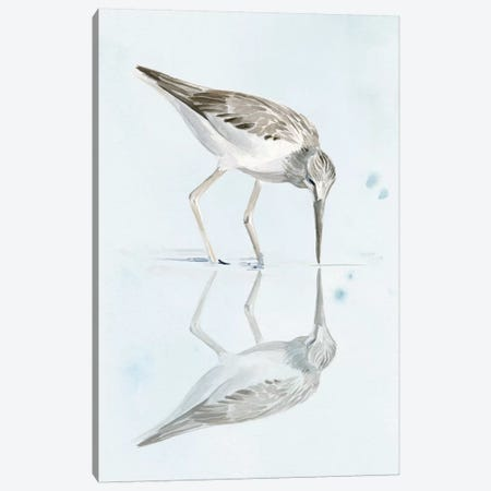 Sandpiper Reflections I Canvas Print #JPP189} by Jennifer Paxton Parker Canvas Print