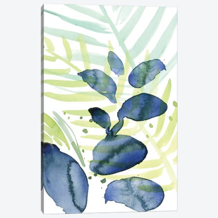 Queen Palms II Canvas Print #JPP18} by Jennifer Paxton Parker Canvas Artwork