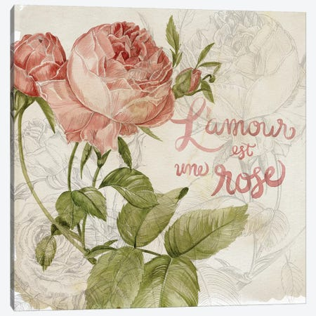 Rose Romance I Canvas Print #JPP19} by Jennifer Paxton Parker Canvas Art