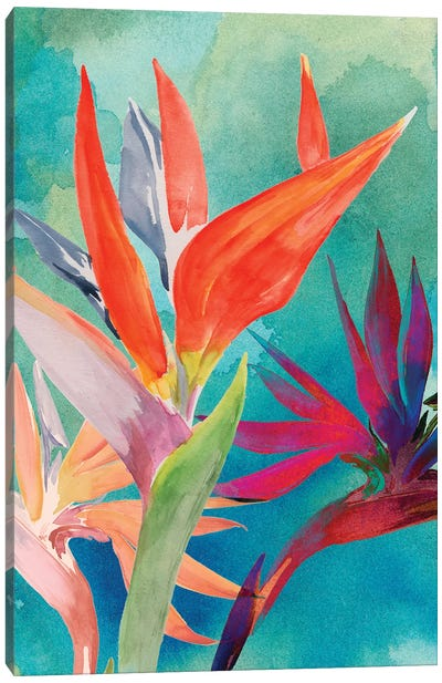 Vivid Birds of Paradise I Canvas Art Print