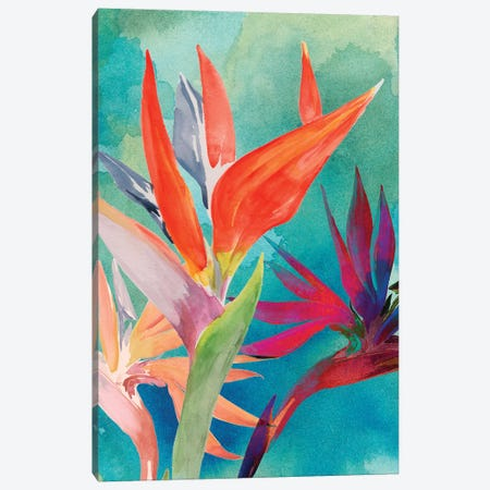 Vivid Birds of Paradise I Canvas Print #JPP201} by Jennifer Paxton Parker Canvas Artwork