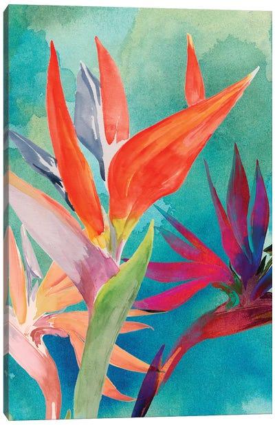 Vivid Birds of Paradise I Canvas Art Print