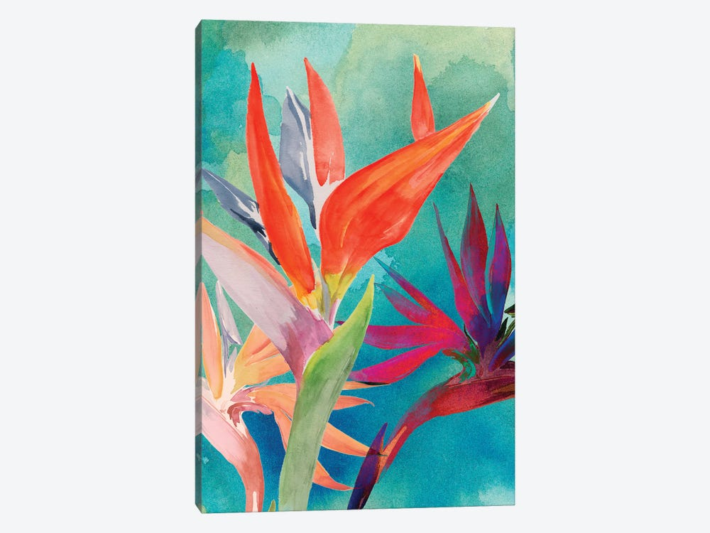 Vivid Birds of Paradise I by Jennifer Paxton Parker 1-piece Canvas Wall Art