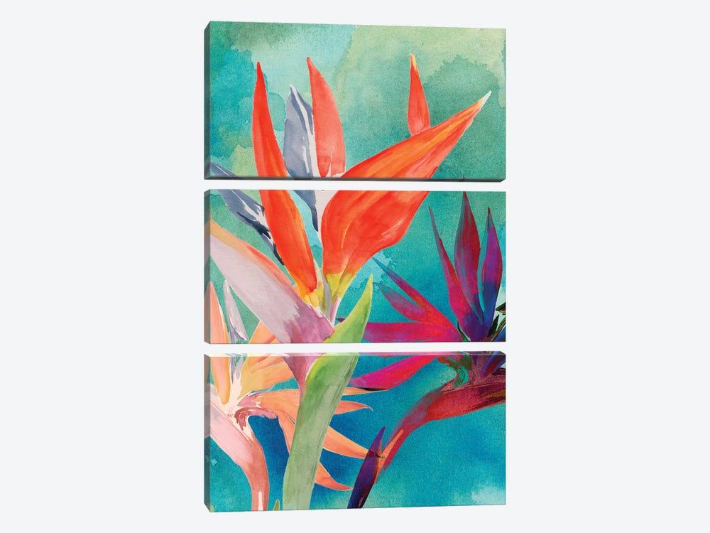 Vivid Birds of Paradise I by Jennifer Paxton Parker 3-piece Canvas Art