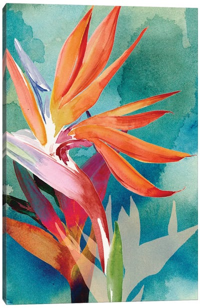 Vivid Birds of Paradise II Canvas Art Print