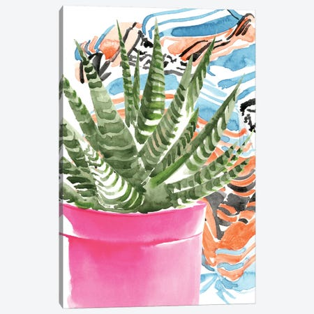 Zebra Succulent II Canvas Print #JPP204} by Jennifer Paxton Parker Canvas Art Print