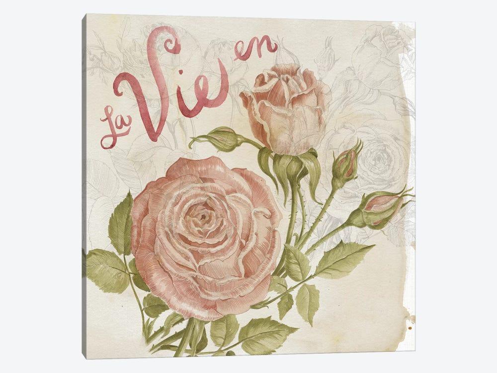 Rose Romance II by Jennifer Paxton Parker 1-piece Canvas Artwork
