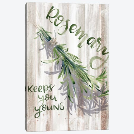 Green Witch I Canvas Print #JPP218} by Jennifer Paxton Parker Canvas Art Print