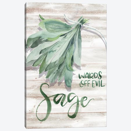 Green Witch III Canvas Print #JPP220} by Jennifer Paxton Parker Canvas Wall Art