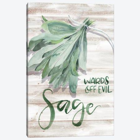 Green Witch III Canvas Print #JPP220} by Jennifer Paxton Parker Canvas Wall Art