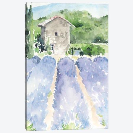 Lavender Fields I Canvas Print #JPP222} by Jennifer Paxton Parker Canvas Art