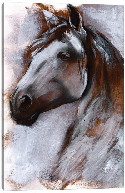 Mane Attraction I Canvas Art Print