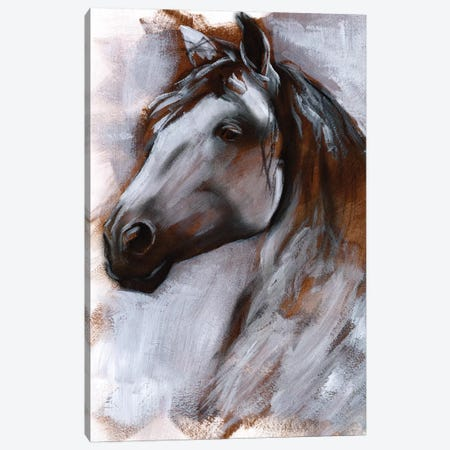 Mane Attraction I Canvas Print #JPP235} by Jennifer Paxton Parker Canvas Artwork