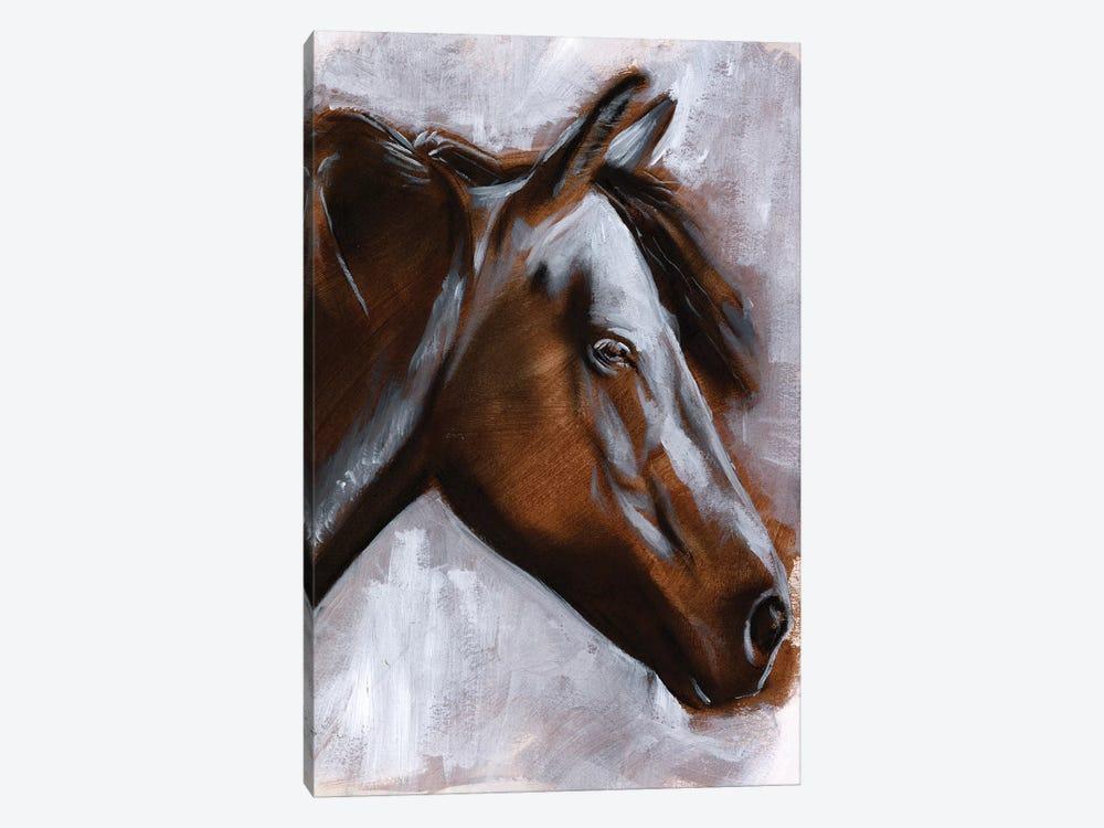 Mane Attraction II by Jennifer Paxton Parker 1-piece Canvas Art
