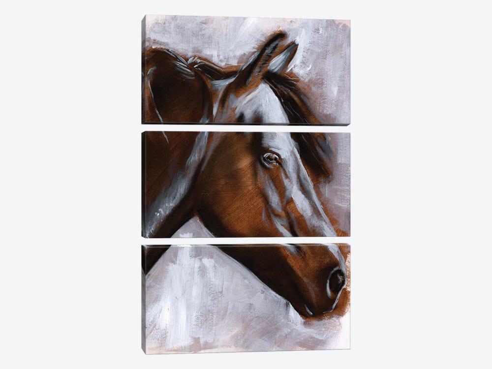Mane Attraction II by Jennifer Paxton Parker 3-piece Canvas Artwork