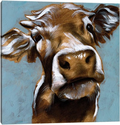 Cow Kisses I Canvas Art Print