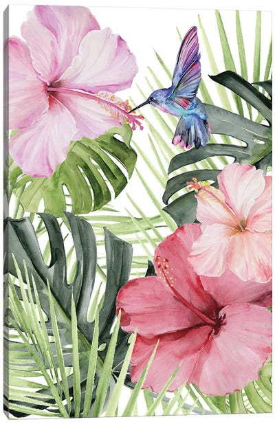 Hibiscus & Hummingbird I Canvas Art Print