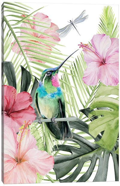 Hibiscus & Hummingbird II Canvas Art Print