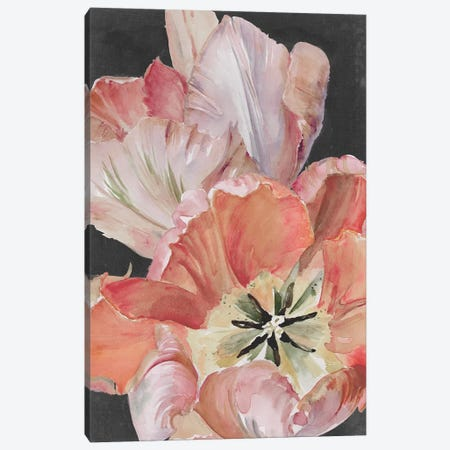 Pastel Parrot Tulips I Canvas Print #JPP255} by Jennifer Paxton Parker Canvas Artwork