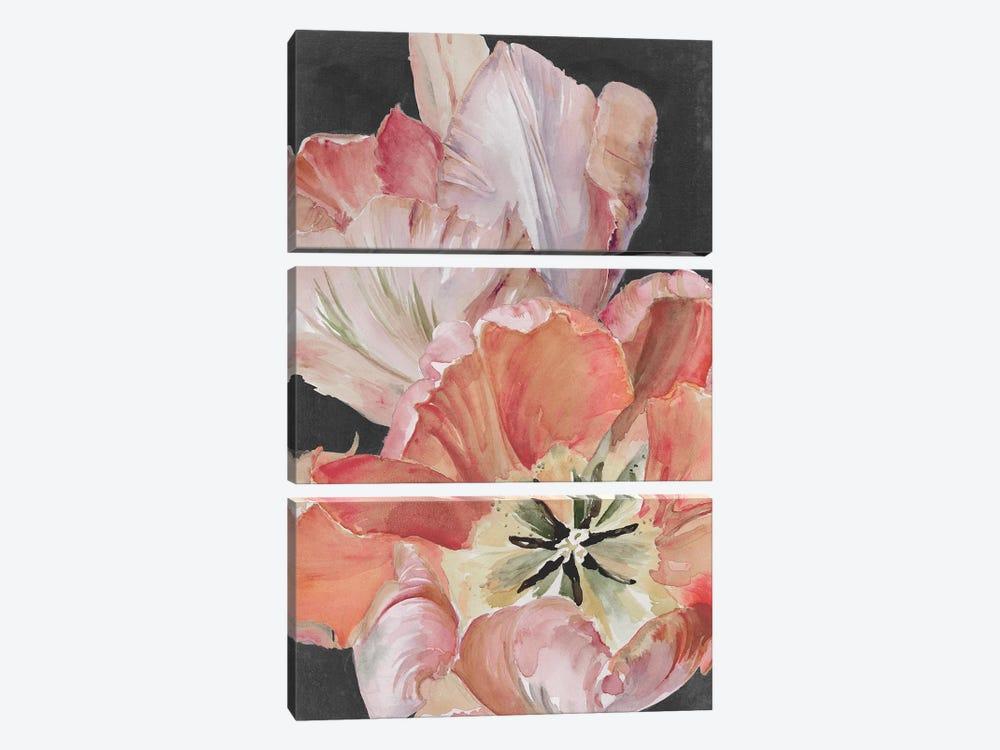 Pastel Parrot Tulips I by Jennifer Paxton Parker 3-piece Canvas Print
