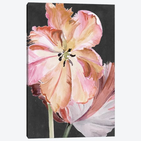 Pastel Parrot Tulips II Canvas Print #JPP256} by Jennifer Paxton Parker Canvas Artwork