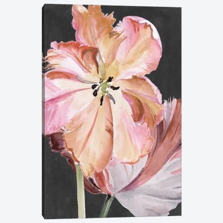 Pastel Parrot Tulips II Canvas Print #JPP256} by Jennifer Paxton Parker Canvas Artwork