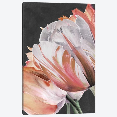 Pastel Parrot Tulips III Canvas Print #JPP257} by Jennifer Paxton Parker Canvas Wall Art