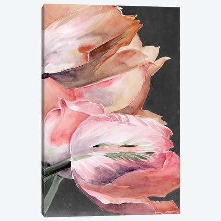 Pastel Parrot Tulips IV Canvas Print #JPP258} by Jennifer Paxton Parker Canvas Print